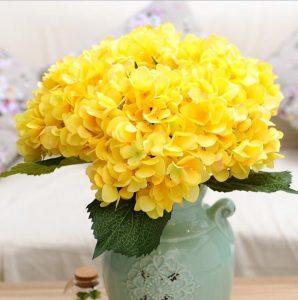 ช่อดอกไฮเดรนเยียสีเหลือง