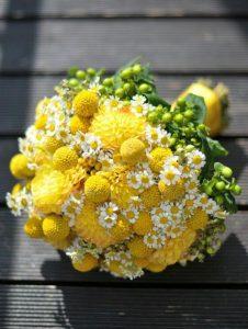 ช่อดอกเบญจมาศปิงปองสีเหลือง