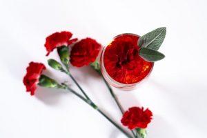 ดอกคาร์เนชัน สัญลักษณ์วันพ่อแม่ประเทศเกาหลีใต้